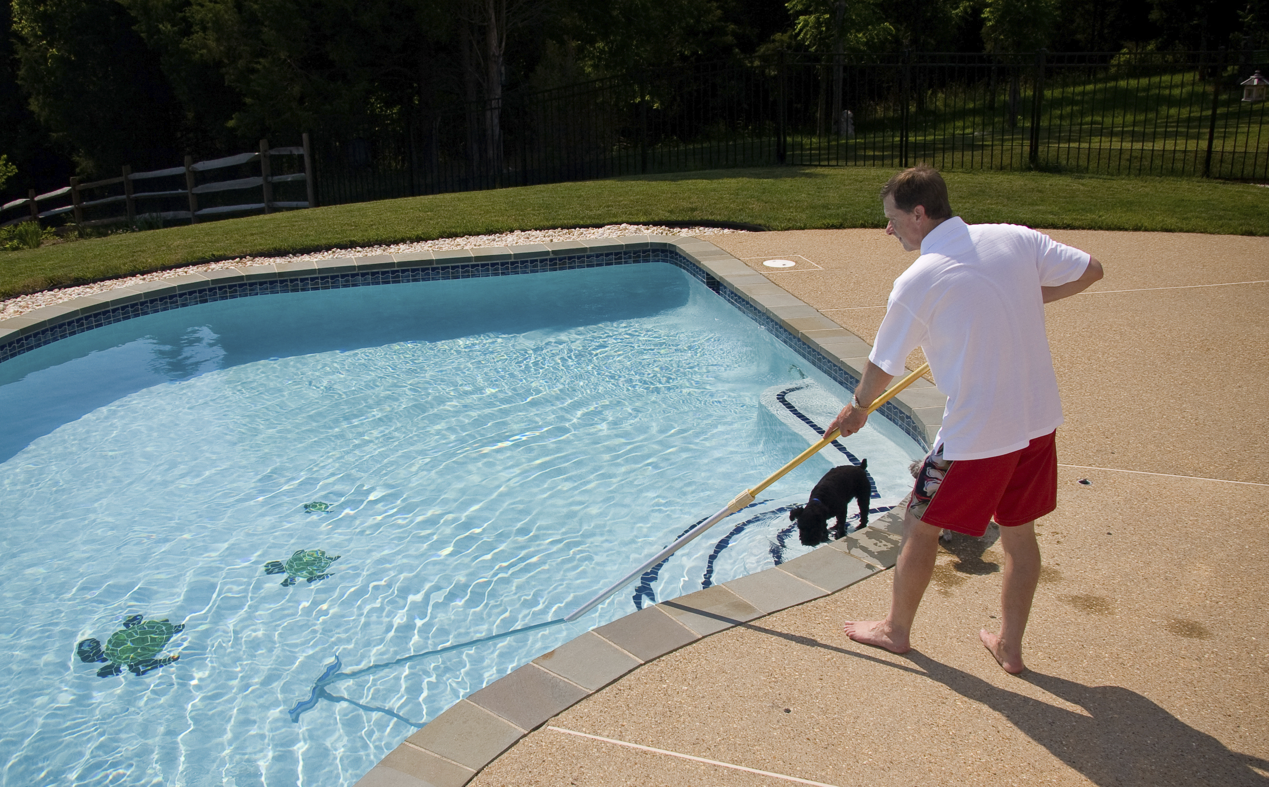 Proper pool maintenance is imperative as summer draws to a for Pool maintenance